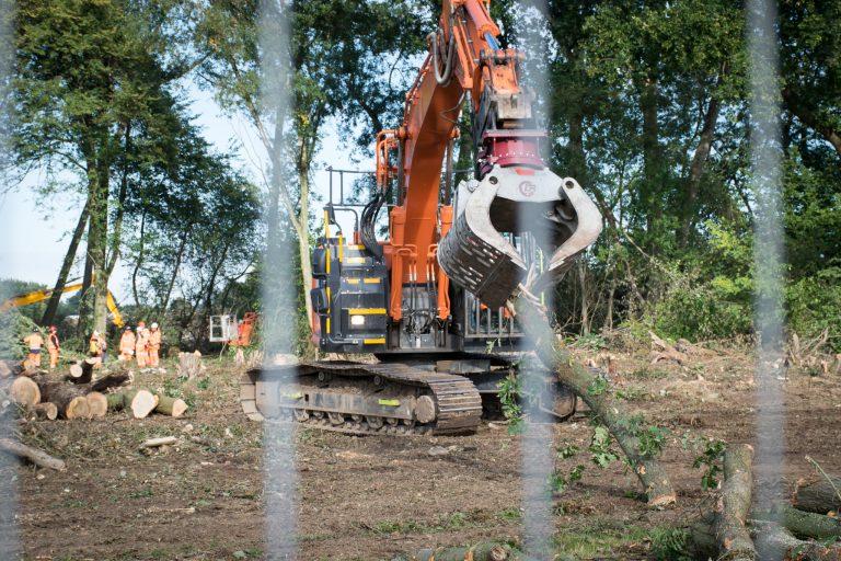 HS2 destroys woodland